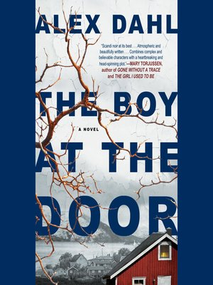cover image of The Boy at the Door
