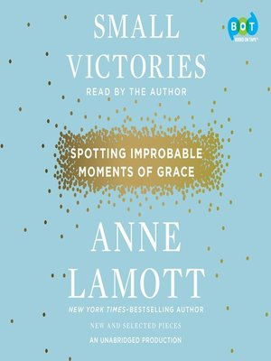 cover image of Small Victories