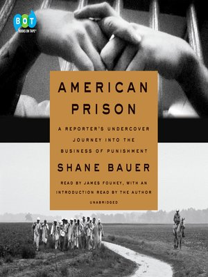 cover image of American Prison