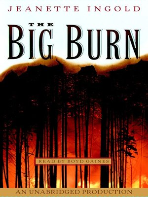 cover image of The Big Burn