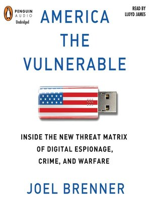 cover image of America the Vulnerable