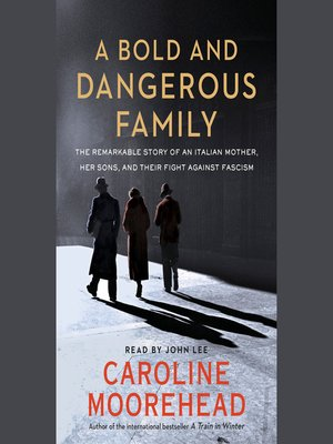 cover image of A Bold and Dangerous Family