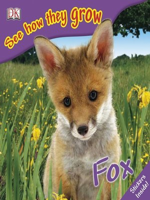 cover image of Fox