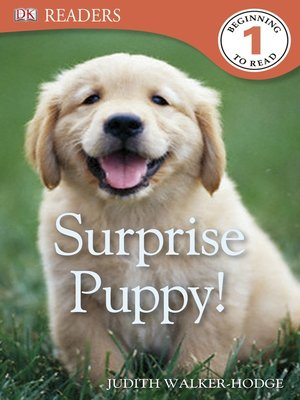 cover image of Surprise Puppy