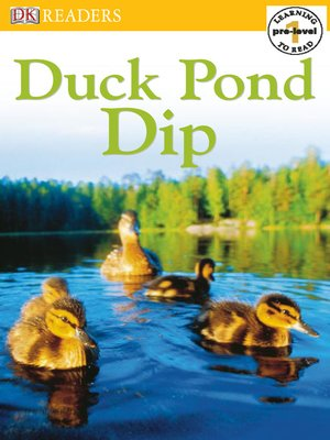 cover image of Duck Pond Dip