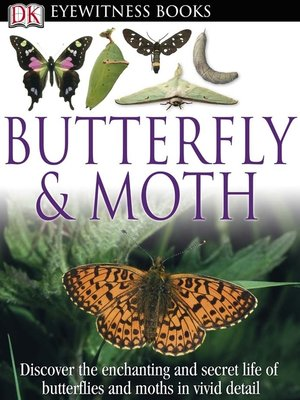 cover image of Butterfly and Moth