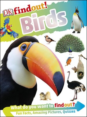 cover image of DKfindout! Birds