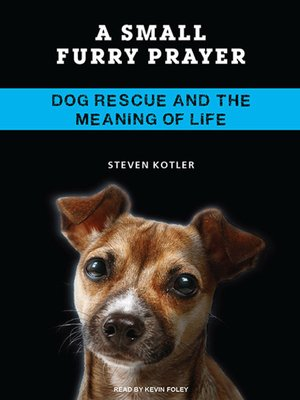 cover image of A Small Furry Prayer
