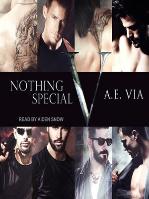 cover image of Nothing Special V