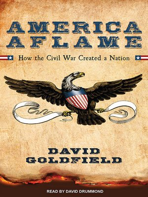 cover image of America Aflame