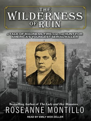 cover image of The Wilderness of Ruin