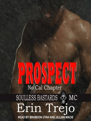 cover image of Prospect