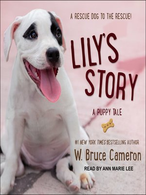 cover image of Lily's Story