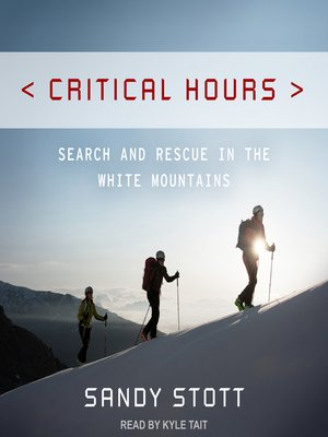cover image of Critical Hours