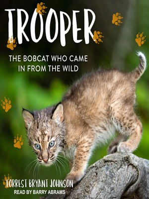 cover image of Trooper
