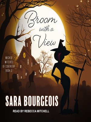 cover image of Broom with a View