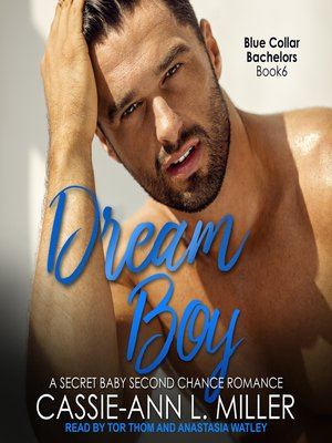 cover image of Dream Boy