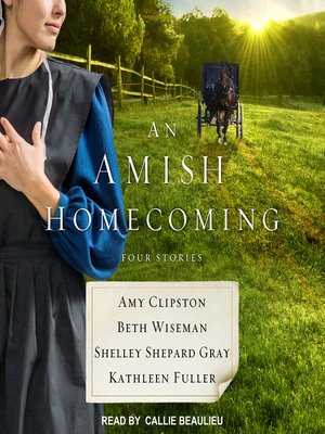 cover image of An Amish Homecoming