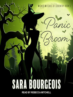 cover image of Panic Broom
