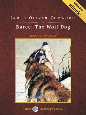 cover image of Baree--The Wolf Dog