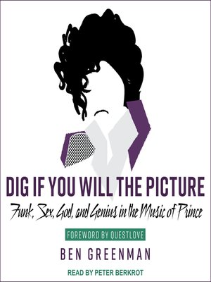 cover image of Dig If You Will the Picture