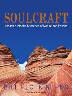 cover image of Soulcraft