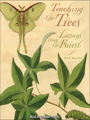 cover image of Teaching the Trees