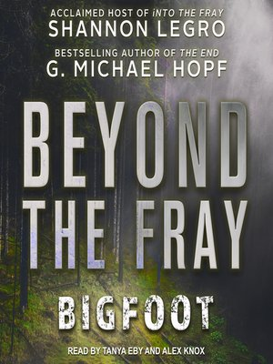 cover image of Beyond the Fray