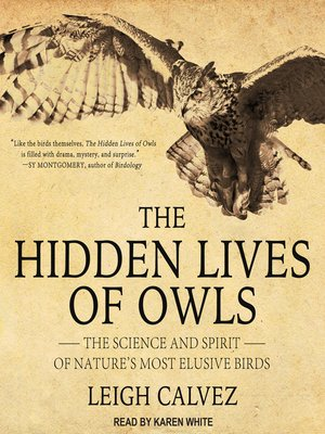 cover image of The Hidden Lives of Owls