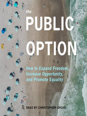 cover image of The Public Option