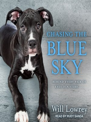 cover image of Chasing the Blue Sky
