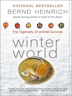 cover image of Winter World