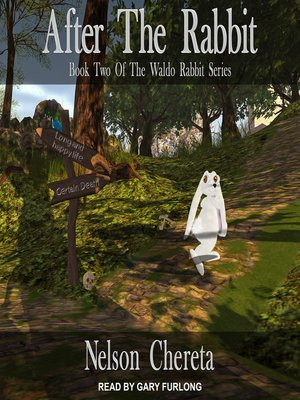 cover image of After the Rabbit