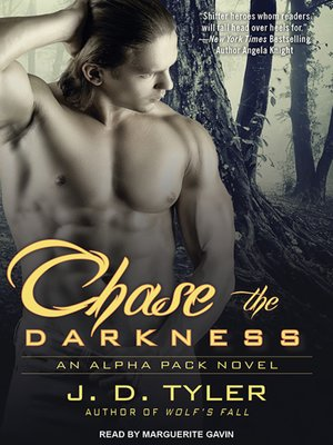 cover image of Chase the Darkness