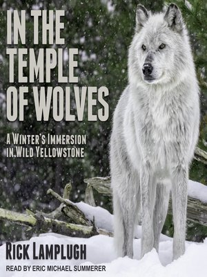 cover image of In the Temple of Wolves