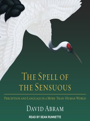 cover image of The Spell of the Sensuous