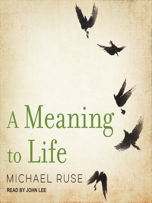 cover image of A Meaning to Life