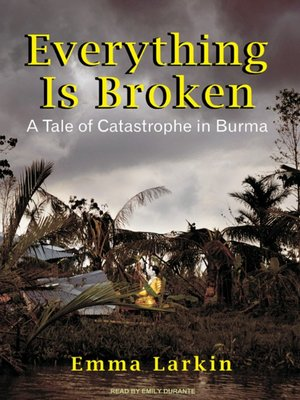 cover image of Everything Is Broken