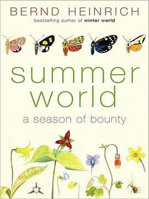 cover image of Summer World