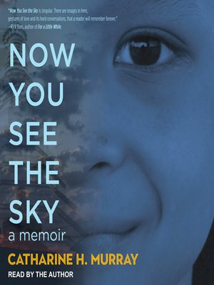 cover image of Now You See the Sky