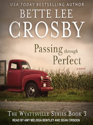 cover image of Passing through Perfect