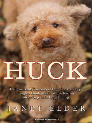 cover image of Huck