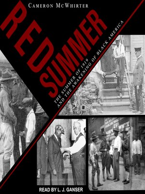 cover image of Red Summer