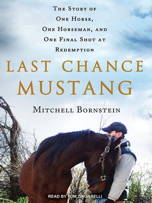 cover image of Last Chance Mustang