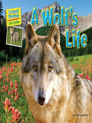 cover image of A Wolf's Life