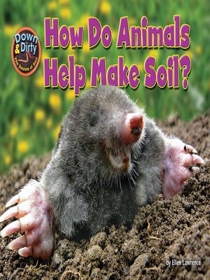 cover image of How Do Animals Help Make Soil?