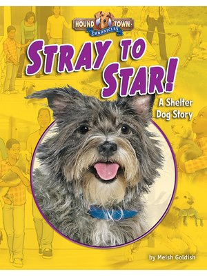 cover image of Stray to Star!
