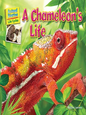 cover image of A Chameleon's Life
