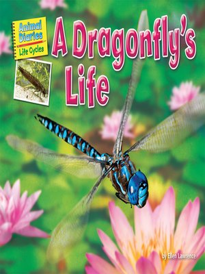 cover image of A Dragonfly's Life
