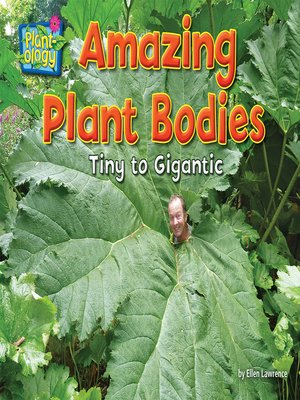 cover image of Amazing Plant Bodies